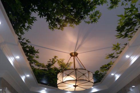 потолок с фотопечатью листьев