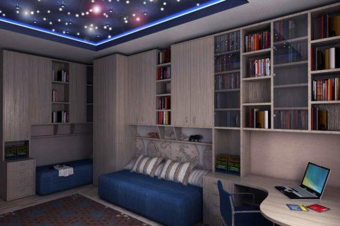 комната с книжными полками