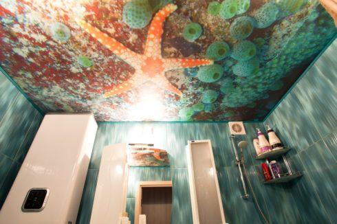 потолок с морской звездой