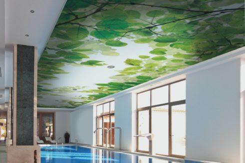 бассейн с потолком фотопечатью листьев