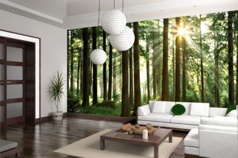 стена сосновый лес потолок глянец