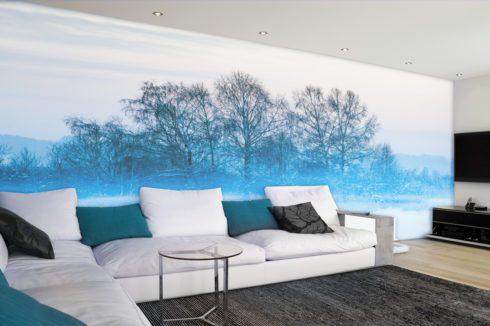 стена с зимой потолок белый
